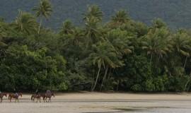 Promenade équestre en Australie